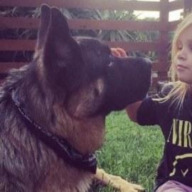 Un chien destiné à être mangé en Chine finit dévoré… de bisous !