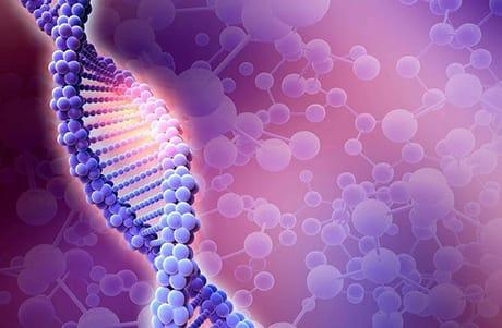 Genoma, virus e memoria: il 2018 della biologia