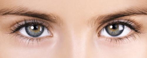 Une paire d'oeils