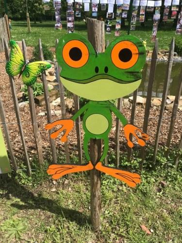 Eco-SChools - D'où vient la grenouille