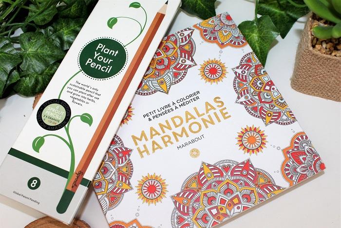 coloriage mandalas et crayons ecolo