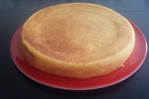tarte-formage-blanc-sans-pâte