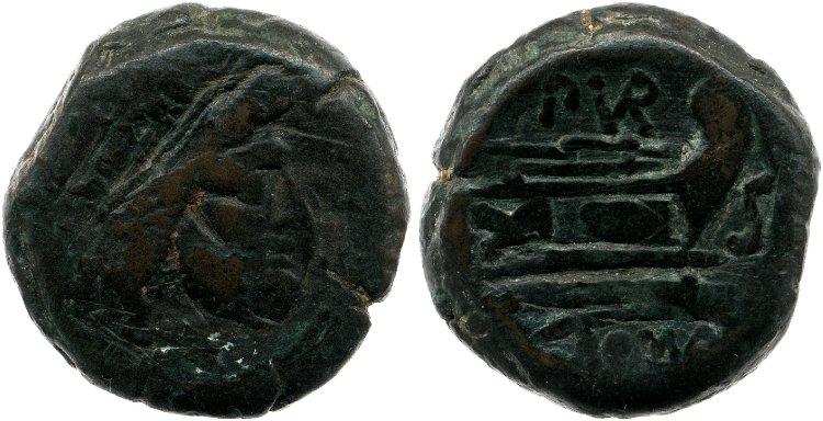 742FU – Semis Furia – Furius Purpurio