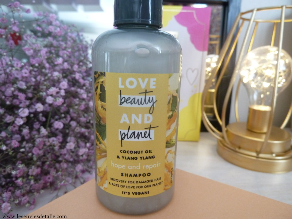 Shampooing Oasis réparatrice Love Beauty & Planet