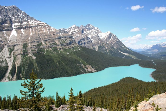 Der Peyto Lake am Icefields Parkway