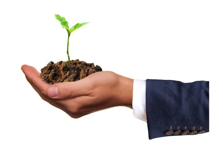 Une main d'un homme en costume tient en son creux une jeune plante qui pousse