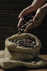 chocolat-equitable