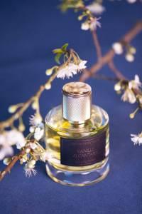 Le parfum vanille Alcantara des fleurs du golfe au milieu de fleurs