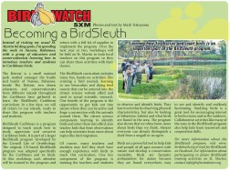 BirdWatch-BirdSleuth-web