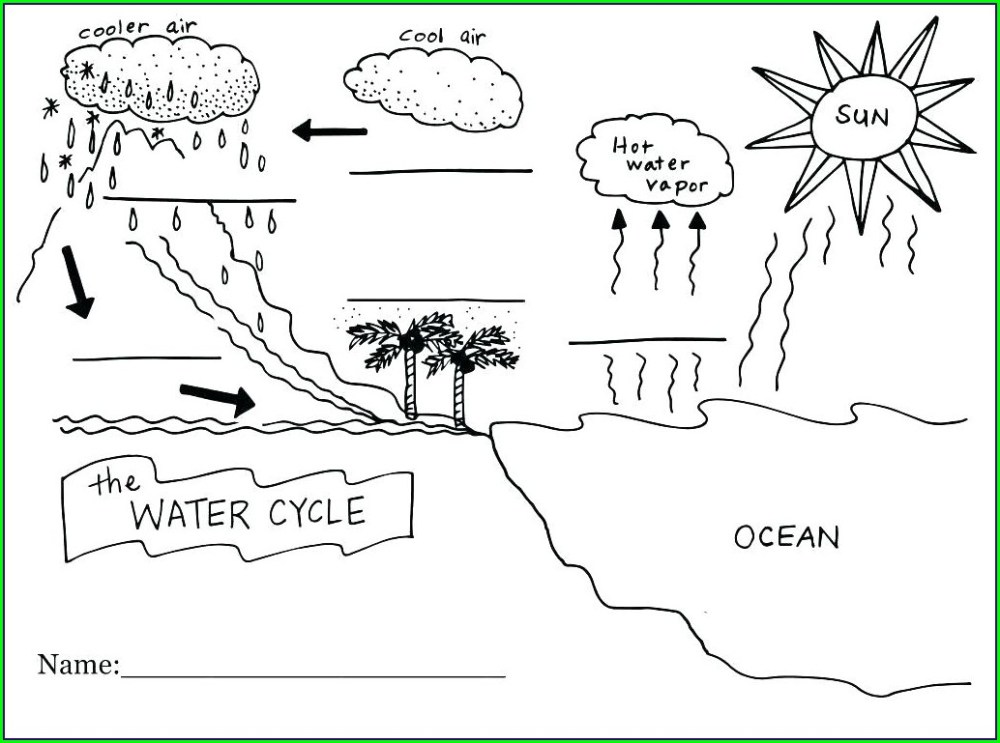 medium resolution of Nitrogen Cycle Worksheets For 6th Grade   Printable Worksheets and  Activities for Teachers