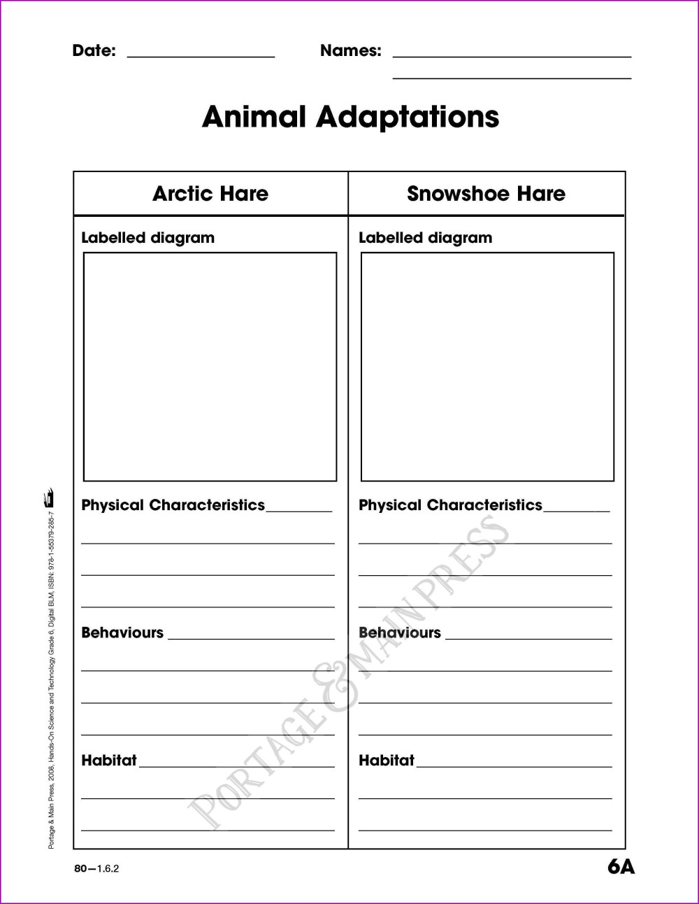 medium resolution of Free Worksheet On Aerial Habitat For Grade 1   Printable Worksheets and  Activities for Teachers