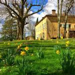 jacinthe fleurie maison d'hôtes les hauts de saulies