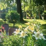 fleurs de lys maison d'hôtes les hauts de saulies