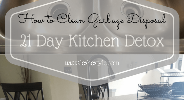 21 Day Kitchen Detox| Cleaning Garbage Disposal