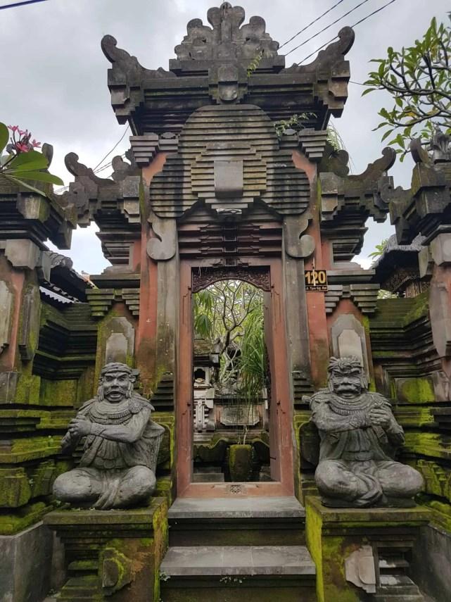 Bali, les rizières de Tegallalang et le temple Pura Tirta Empul🌱 6