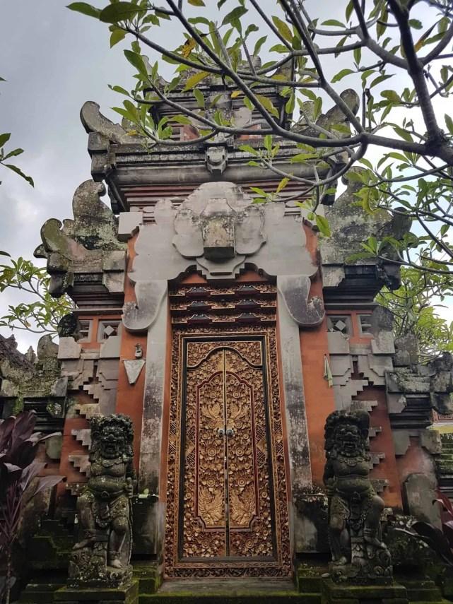 Bali, les rizières de Tegallalang et le temple Pura Tirta Empul🌱 9