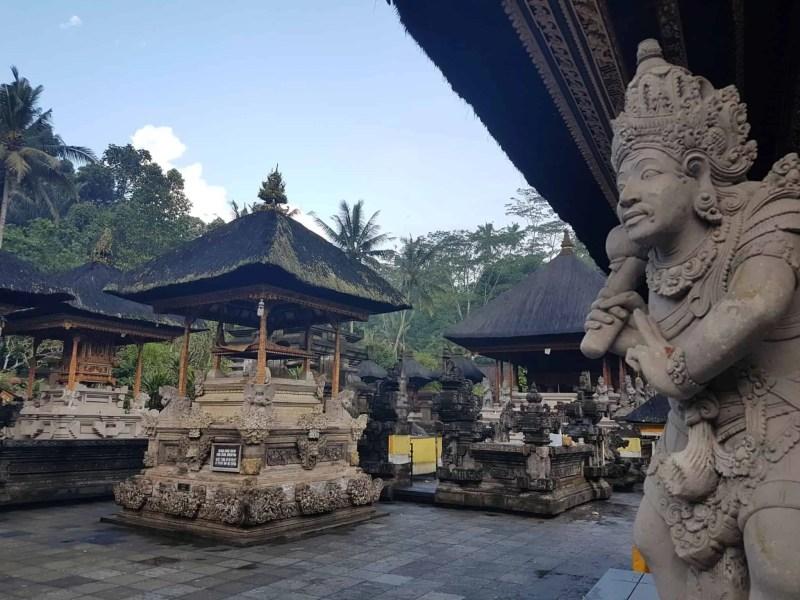 Bali, les rizières de Tegallalang et le temple Pura Tirta Empul🌱 25