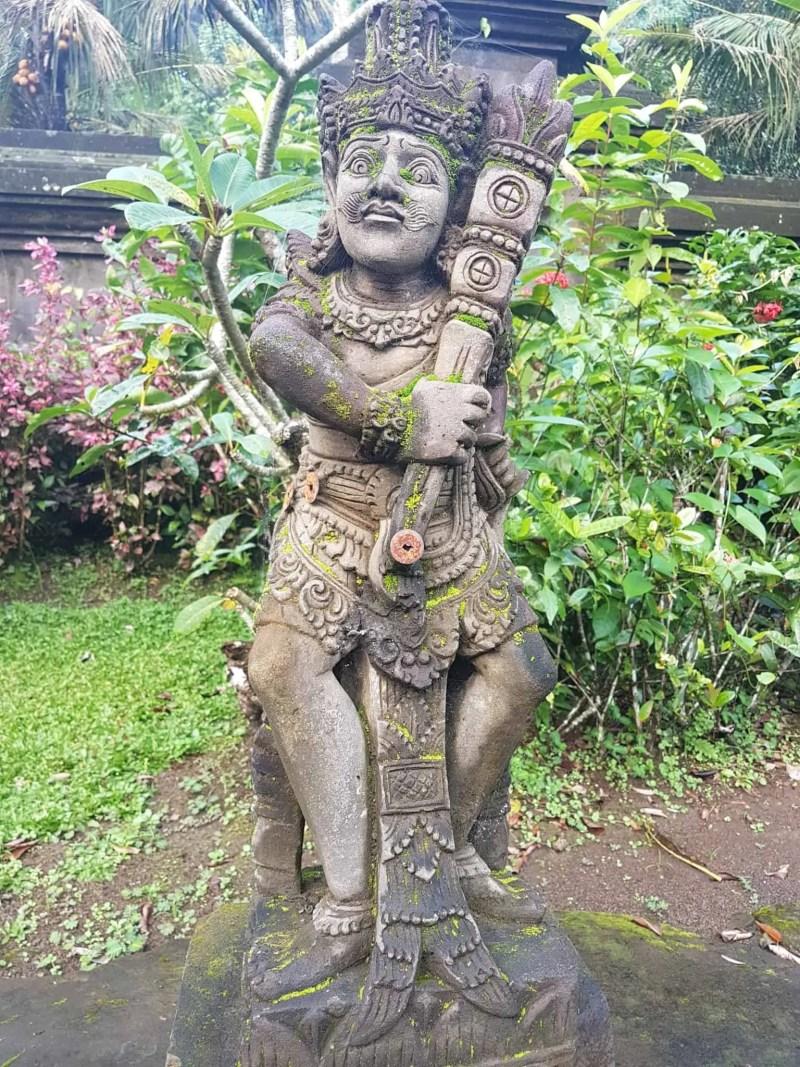 Bali, les rizières de Tegallalang et le temple Pura Tirta Empul🌱 26