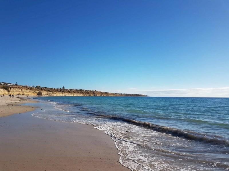 Australie, dégustation de vin et découverte de la réserve Towilla Yerta 🌅 10