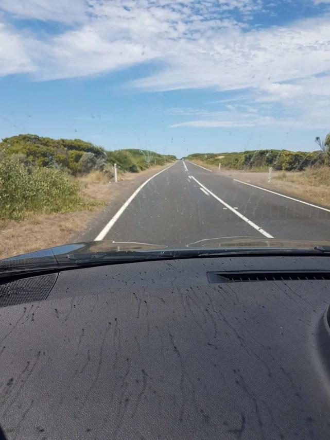 Australie, la Great Ocean Road une route aux milles visages 😍 3