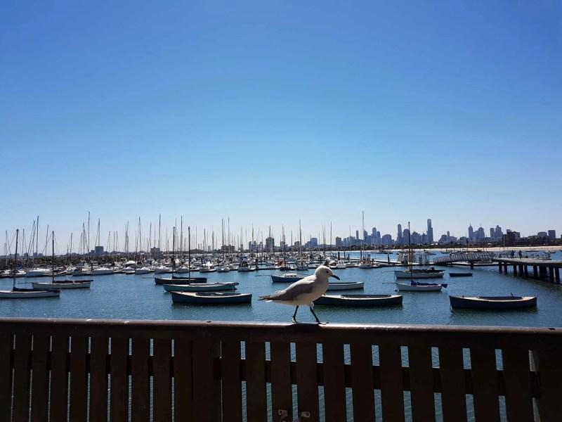"""Australie, la plage de St Kilda ou la """"traversée du désert"""" 👳 12"""
