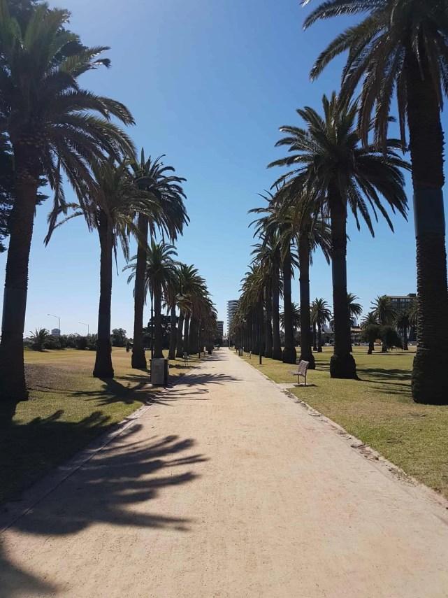 """Australie, la plage de St Kilda ou la """"traversée du désert"""" 👳 17"""