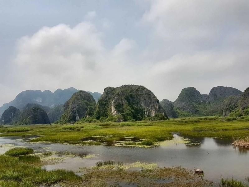 Vietnam, la magnifique réserve naturelle de Vân Long 🌾 18