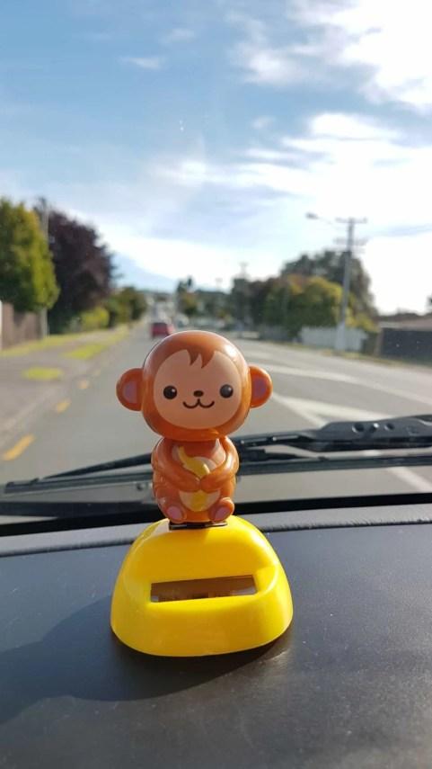 Nouvelle-Zélande, on prend enfin la route avec notre van ! 🚀 3