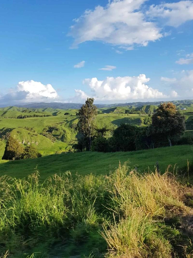 Nouvelle-Zélande, la magnifique cascade de Bridal Veil Falls 💧 15