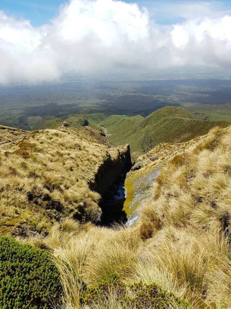 Nouvelle-Zélande, rando Holly Hut Track avec vue sur le Mont Taranaki ❤ 20