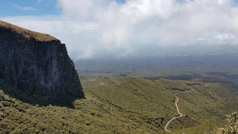 Nouvelle-Zélande, rando Holly Hut Track avec vue sur le Mont Taranaki ❤ 21