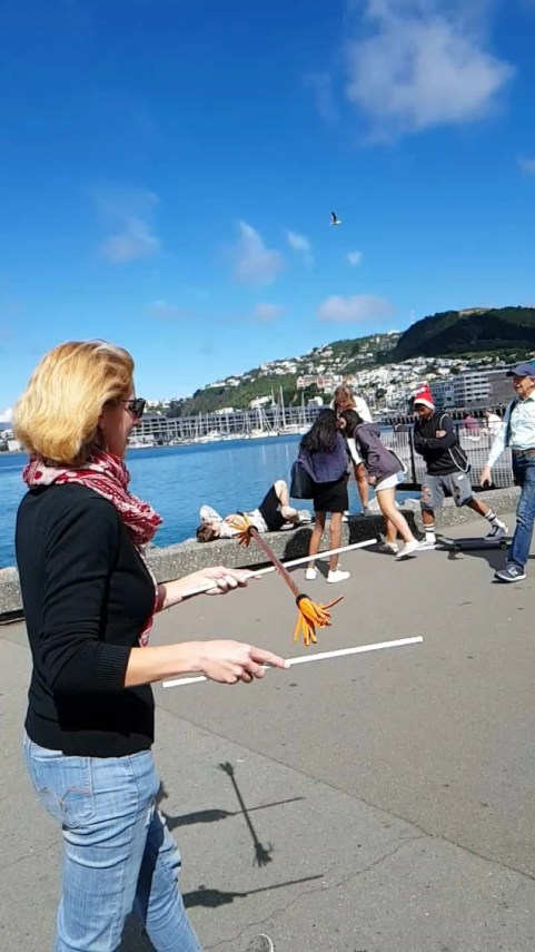 Nouvelle-Zélande, on visite  Wellington avant d'embarquer pour l'île du Sud ⛴ 16