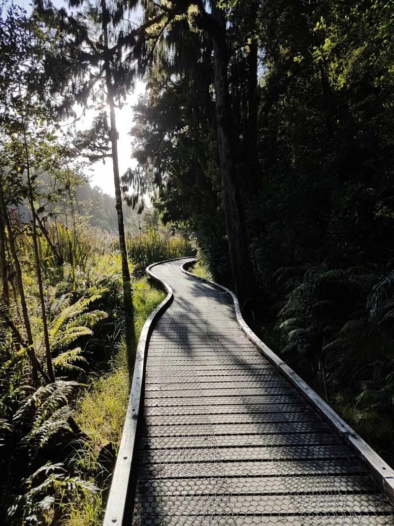 Nouvelle-Zélande, un levé de soleil féerique sur le lac Matheson ☀️ 17