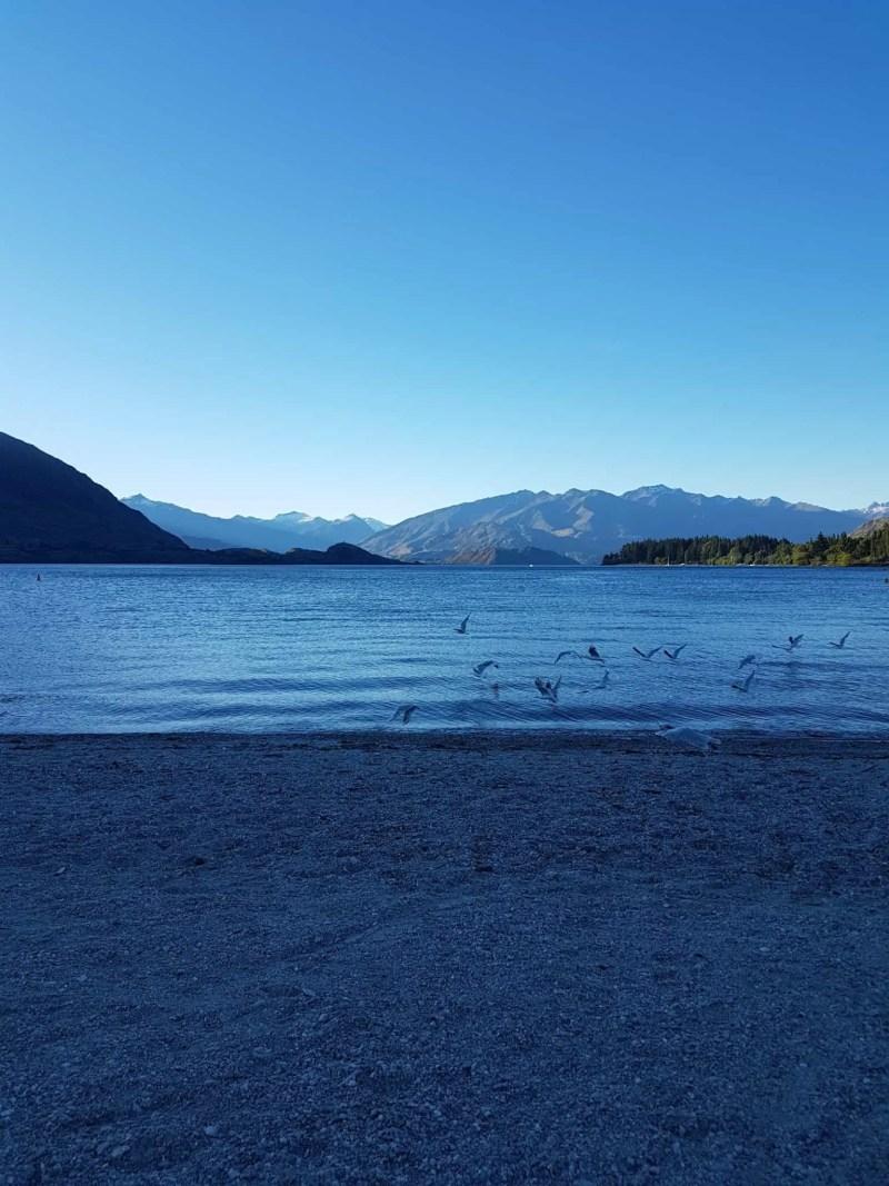 Nouvelle-Zélande, Wanaka notre ville coup de coeur ❤ 2