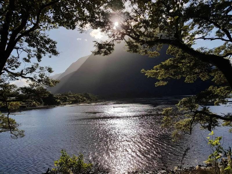 Nouvelle-Zélande, magnifique tour en bateau au coeur du Milford Sound ⛴ 33