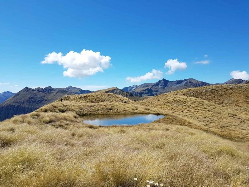 Nouvelle-Zélande, la Mount Burns Tarns Track une rando hors des sentiers battus 👟 12