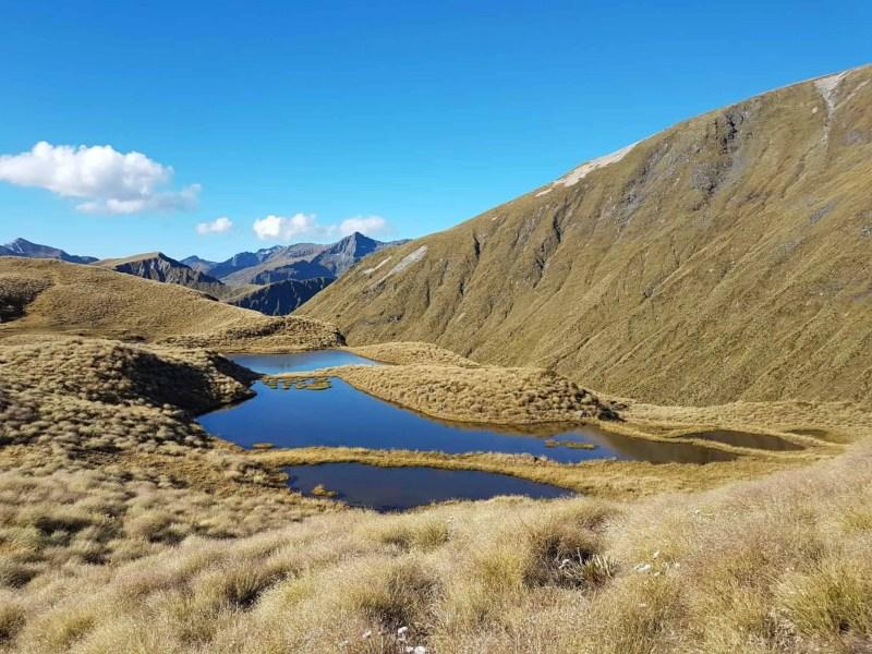 Nouvelle-Zélande, la Mount Burns Tarns Track une rando hors des sentiers battus 👟 20