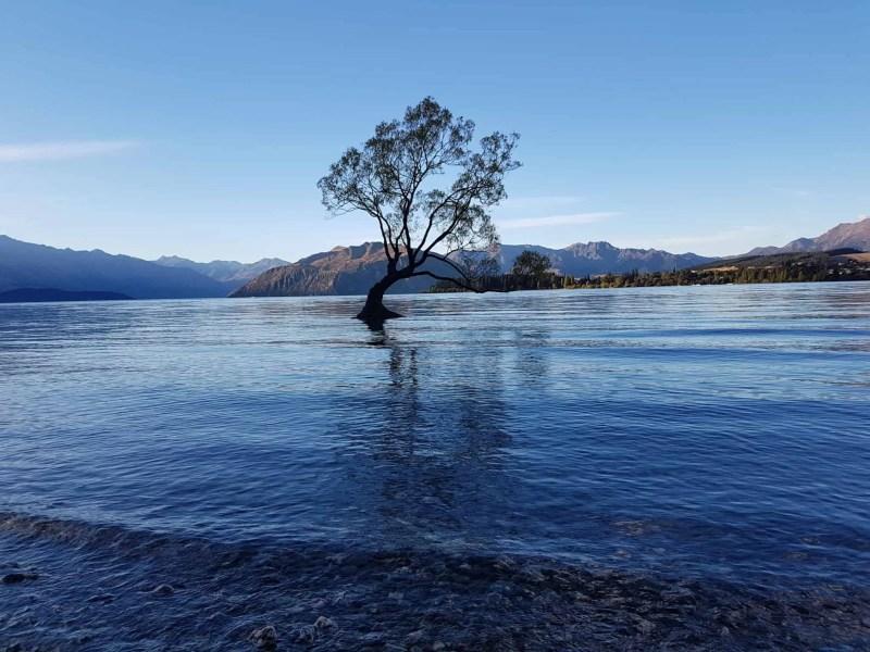 Nouvelle-Zélande, trois mois de douceur de vivre à Wanaka 🌞 15