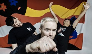Image du groupe the Avalanches