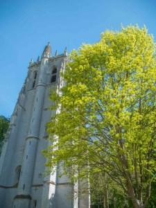 Abbaye de bec Hellouin avec arbre jaune