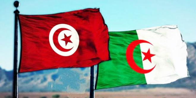Foot : Demain en amical, Tunisie - Algérie