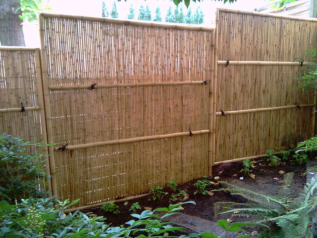 Bambous  Conception et amnagement de jardins  Jardins Japonais  Jardins zen asiatiques
