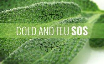 Cold-Flu-SOS