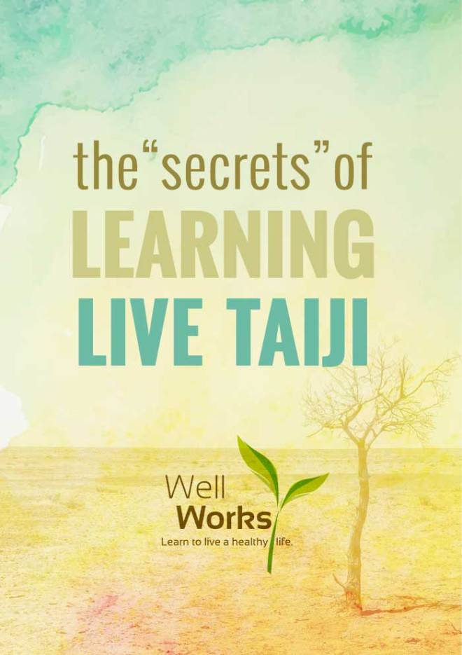 Why I Don't Recommend Learning Taiji from a DVD By Master Kathleen M. Gill, Ph.D. | Taiji quan (old spelling Tai Chi Chuan) is an internal martial art and a preventive health practice that has documented benefits for body, mind and spirit…but most of the benefits require many layers of mastery.