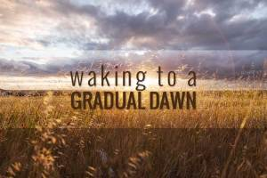 So, what exactly is a dawn simulator? Simply put, it's a natural alarm clock that involves timing lights in the bedroom to come on gradually, over a period of between 30 minutes and two hours before your preferred time of awakening.