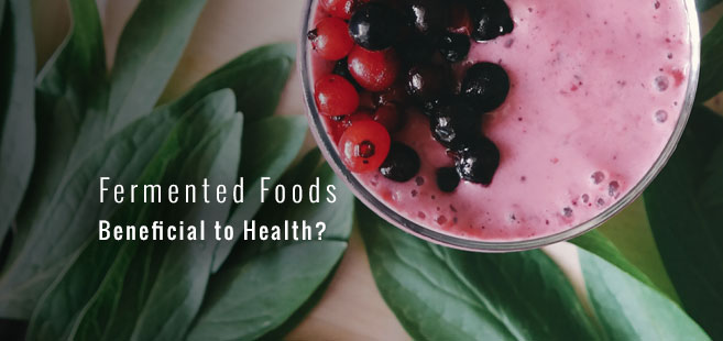 Are Fermented Foods Beneficial to Health?