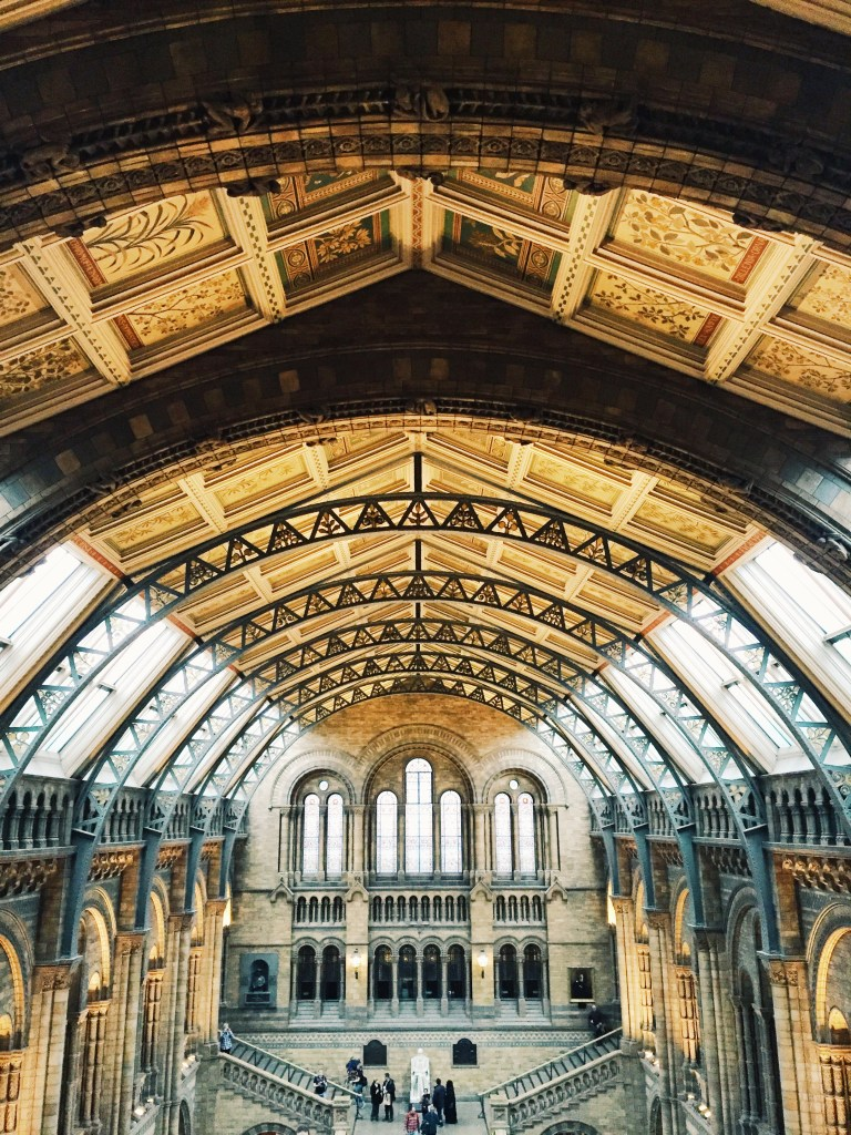 Natural History Museum is too gorgeous