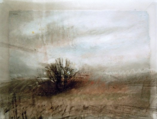 """Lone Tree. Charcoal on vellum over acrylic on paper, 5"""" x 6.5"""", 2012 SOLD"""