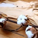Les avantages du coton biologique