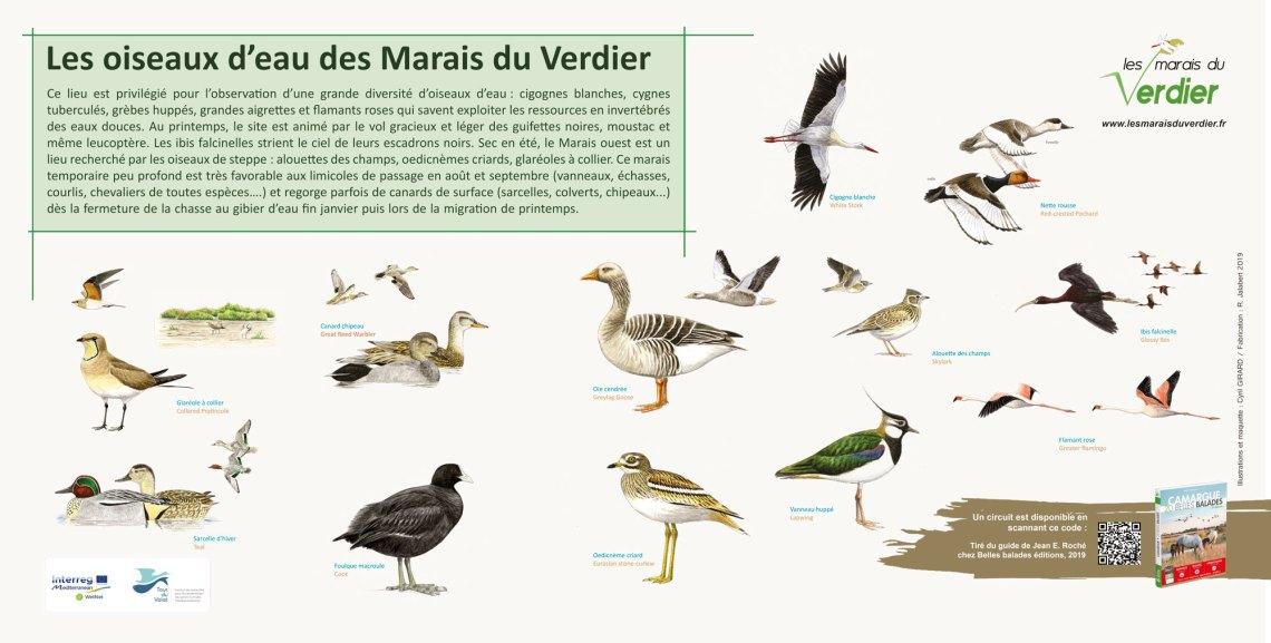 panneau-oiseaux-oservatoire